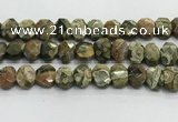 CNG8619 10*13mm - 12*16mm faceted freeform rhyolite beads