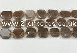 CNG8811 15.5 inches 16mm - 20mm faceted freeform moonstone beads
