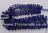 CNL1660 15.5 inches 8*25mm - 10*35mm cuboid lapis lazuli beads