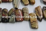 CPJ375 15.5 inches 8*14mm - 10*30mm picasso jasper chips beads