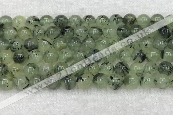 CPR393 15.5 inches 12mm round prehnite beads wholesale