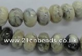 CRB49 15.5 inches 8*12mm rondelle african opal gemstone beads