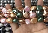 CSB2158 15.5 inches 14*14mm - 15*15mm baroque mixed shell pearl beads