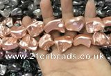 CSB2173 15.5 inches 16*16mm - 20*22mm baroque shell pearl beads