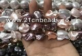CSB2176 15.5 inches 16*16mm - 20*22mm baroque mixed shell pearl beads