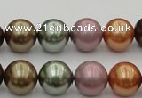 CSB383 15.5 inches 14mm round mixed color shell pearl beads