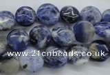CSO201 15.5 inches 10mm flat round sodalite gemstone beads
