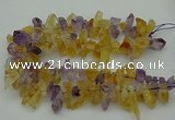 CTD419 Top drilled 10*20mm - 15*35mm nuggets amethyst & citrine beads