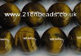 CTE1222 15.5 inches 14mm round AB+ grade yellow tiger eye beads