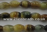 CTE1551 15.5 inches 5*8mm rice golden & blue tiger eye beads wholesale