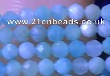 CTG1050 15.5 inches 2mm faceted round tiny amazonite beads