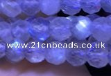 CTG1209 15.5 inches 4mm faceted round tiny labradorite beads