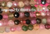 CTG2140 15 inches 2mm,3mm & 4mm faceted round natural tourmaline beads
