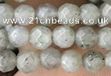 CTG3585 15.5 inches 4mm faceted round labradorite beads
