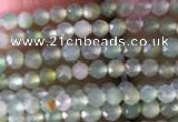CTG821 15.5 inches 2mm faceted round tiny Australia chrysoprase beads