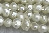 FWP11 15 inches 2.8mm potato white freshwater pearl strands
