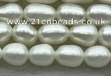 FWP161 15 inches 3.5mm - 4mm rice white freshwater pearl strands