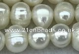 FWP55 15 inches 6mm - 7mm potato white freshwater pearl strands
